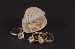 Δαχτυλίδια διαμαντιών στο θαλασσινό κοχύλι Στοκ φωτογραφία με δικαίωμα ελεύθερης χρήσης