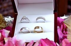 Δαχτυλίδια που τίθενται γαμήλια στοκ εικόνα με δικαίωμα ελεύθερης χρήσης