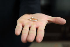 Δαχτυλίδια στο φοίνικα Στοκ Φωτογραφία