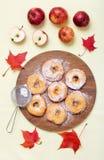 Δαχτυλίδια της Apple, φρέσκα μήλα και ξηρά φύλλα φθινοπώρου Στοκ Εικόνα