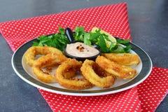 Δαχτυλίδια Calamary που τηγανίζονται με το πικάντικα souce και το rocca Μεσογειακός τρόπος ζωής τρόφιμα υγιή Στοκ φωτογραφία με δικαίωμα ελεύθερης χρήσης