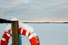 Δαχτυλίδι ζωής και μια παγωμένη λίμνη Στοκ Εικόνες