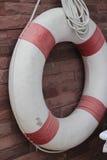 Δαχτυλίδι ζωής στη λίμνη Στοκ εικόνα με δικαίωμα ελεύθερης χρήσης