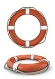 Δαχτυλίδι ζωής Στοκ Εικόνες