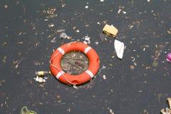 Δαχτυλίδι ζωής Στοκ εικόνες με δικαίωμα ελεύθερης χρήσης