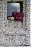 Δαχτυλίδι διαμαντιών στο παράθυρο γρανίτη με το λουλούδι Στοκ φωτογραφίες με δικαίωμα ελεύθερης χρήσης