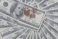 Δαχτυλίδι και σκουλαρίκια Signet σε αμερικανικά δολάρια στοκ φωτογραφία με δικαίωμα ελεύθερης χρήσης