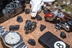 Δαχτυλίδι κρανίων Στοκ Εικόνες
