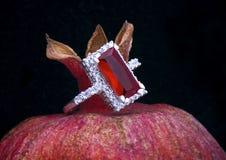 Δαχτυλίδι πολυτέλειας Στοκ φωτογραφία με δικαίωμα ελεύθερης χρήσης