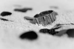 Δαχτυλίδι προτάσεων Στοκ Εικόνες