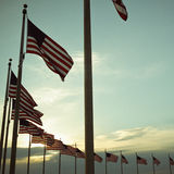 Δαχτυλίδι των αμερικανικών σημαιών Στοκ Εικόνες