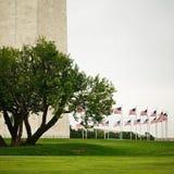 Δαχτυλίδι των σημαιών που περιβάλλουν το μνημείο της Ουάσιγκτον Στοκ Εικόνες
