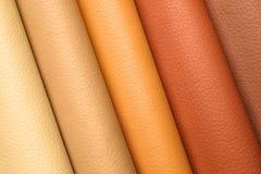 Δείγματα δέρματος των διαφορετικών χρωμάτων για το εσωτερικό σχέδιο Στοκ φωτογραφία με δικαίωμα ελεύθερης χρήσης