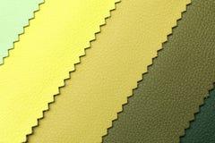 Δείγματα δέρματος των διαφορετικών χρωμάτων για το εσωτερικό σχέδιο Στοκ εικόνες με δικαίωμα ελεύθερης χρήσης