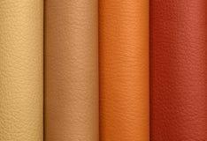 Δείγματα δέρματος των διαφορετικών χρωμάτων Στοκ φωτογραφία με δικαίωμα ελεύθερης χρήσης