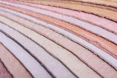 δείγματα δέρματος Στοκ εικόνες με δικαίωμα ελεύθερης χρήσης
