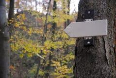 Δείκτης στο δέντρο στο φθινόπωρο-χρωματισμένο δάσος Στοκ φωτογραφίες με δικαίωμα ελεύθερης χρήσης