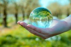 Δείτε στη γούρνα φύσης μια σφαίρα κρυστάλλου Στοκ Εικόνα