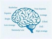 ΔΕΙΚΤΗΣ ΝΟΗΜΟΣΎΝΗΣ, πηλίκο νοημοσύνης, εγκέφαλος, νοοτροπία διανυσματική απεικόνιση