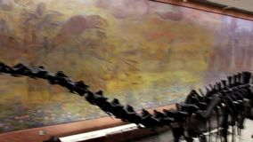 Δεινόσαυροι στην πλήρη αύξηση Κόκκαλα δεινοσαύρων απόθεμα βίντεο