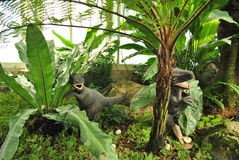 Δεινόσαυρος στο δάσος φτερών στοκ εικόνες με δικαίωμα ελεύθερης χρήσης