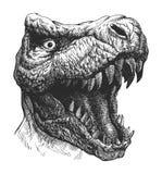 Δεινόσαυρος τυραννοσαύρων. Χέρι που σύρεται. Διανυσματικό eps8 Στοκ Φωτογραφία