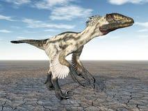 Δεινόσαυρος Deinonychus Στοκ Φωτογραφίες
