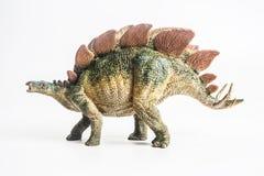 Δεινόσαυρος, Stegosaurus στο άσπρο υπόβαθρο στοκ εικόνες με δικαίωμα ελεύθερης χρήσης