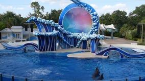 Δελφίνια που πηδούν σε Seaworld στο διεθνές Drive 2 φιλμ μικρού μήκους