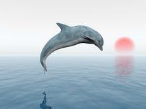 Δελφίνι άλματος ελεύθερη απεικόνιση δικαιώματος
