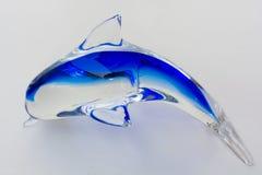Δελφίνι γυαλιού Στοκ Εικόνα