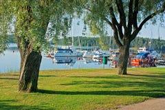 δεμένα λίμνη γιοτ δέντρων Στοκ Εικόνες