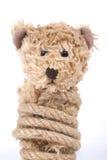 Δεμένος teddy αντέχει Στοκ φωτογραφία με δικαίωμα ελεύθερης χρήσης