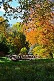 Δενδρολογικός κήπος Zirc Στοκ φωτογραφία με δικαίωμα ελεύθερης χρήσης