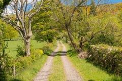 Δενδρώδεις φράκτες και μια Unmade αγροτική διαδρομή ένας μπλε ουρανός πίσω από Largs στοκ φωτογραφία