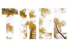 ΔΕΝΤΡΟ λέξης πέρα από τα δέντρα με τα κίτρινα φύλλα ενάντια στον ουρανό φταμένο στοκ φωτογραφία