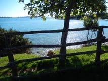 ΔΕΝΤΡΟ ΚΑΙ ΘΑΛΑΣΣΑ, BRIJUNI, ΚΡΟΑΤΊΑ Στοκ φωτογραφία με δικαίωμα ελεύθερης χρήσης