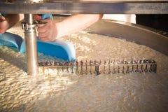 δεξαμενές τυριών στο γαλακτοκομείο στοκ εικόνες με δικαίωμα ελεύθερης χρήσης