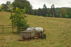 Δεξαμενή νερού στον τομέα χλόης με τα πρόβατα στοκ εικόνα