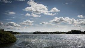 Δεξαμενή οξιών μεγάλων κλώνων Στοκ εικόνες με δικαίωμα ελεύθερης χρήσης