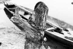 Δεσμός που αλυσοδένει το κολόβωμα Στοκ Εικόνες