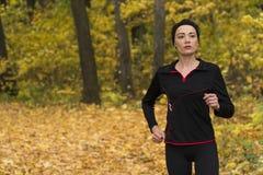 Δεσμός shhnurok krosovok τρέχοντας δασικό πόδι χοροπηδώ αθλητισμός στοκ εικόνα με δικαίωμα ελεύθερης χρήσης
