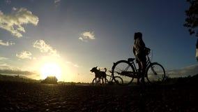 Δευτερεύοντες ποδηλάτες λιμνών που περνούν στις σκιαγραφίες απόθεμα βίντεο