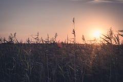 Δευτερεύον ηλιοβασίλεμα χώρας Στοκ Εικόνες