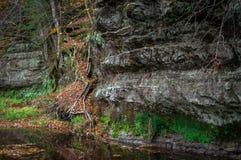 Δευτερεύων κολπίσκος απότομων βράχων Στοκ εικόνες με δικαίωμα ελεύθερης χρήσης
