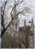 Δημαρχείο στη Βιέννη, Αυστρία στην παραμονή Χριστουγέννων στοκ εικόνες με δικαίωμα ελεύθερης χρήσης