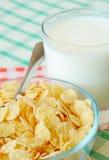 Δημητριακά και γάλα στοκ φωτογραφίες