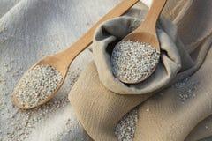 Δημητριακά κριθαριού Στοκ φωτογραφία με δικαίωμα ελεύθερης χρήσης
