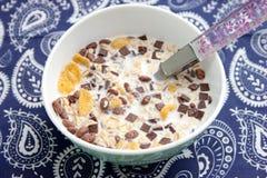 Δημητριακά με τη σοκολάτα στοκ εικόνες