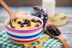 Δημητριακά με το μύρτιλλο Στοκ Εικόνα